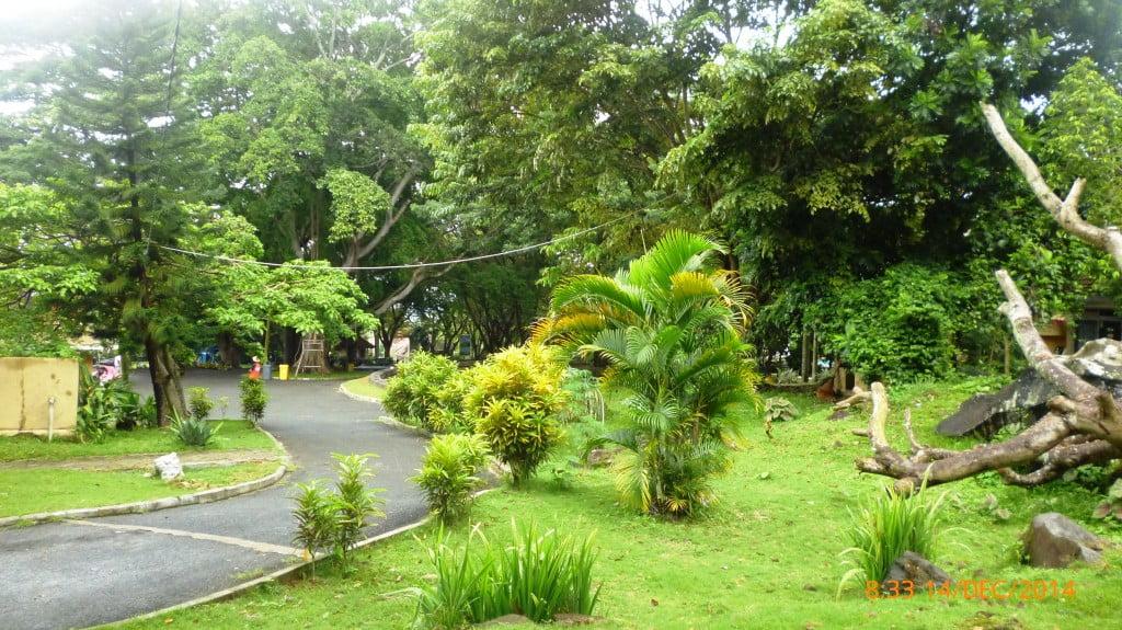 Taman Terbuka Pemandian Air Panas Way Belerang Kalianda